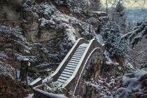 Die Teufelsbrücke bei Inzigkofen - Naturpark Obere Donau von Christine Horn