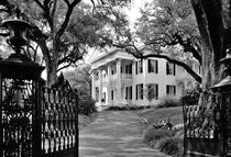 Stanton Hall plantation house, Mississippi by David Lyons