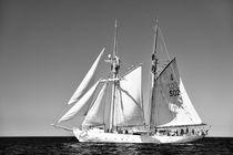 Swedish training schooner Falken. Baltic Sea #1 B&W by David Lyons