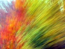Farbexplosion von gugigei