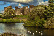 Caerphilly Castle Western Towers by Ian Lewis