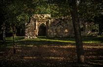 Wallingford Castle von Ian Lewis