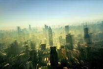 Metropolis Shanghai  by David Lyons