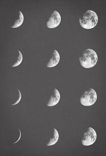 Lunar phases by zapista
