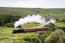 Vintage steam locomotive. Engine No.80072  by David Lyons