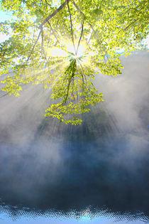 Herbstmorgen am Stausee von Bernhard Kaiser