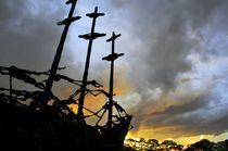 The Coffin Ship of John Behan by David Lyons