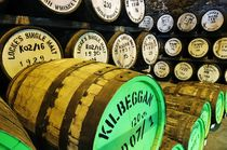 Locke's Distillery, Kilbeggan #1 by David Lyons