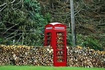 Logging in by David Lyons