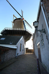 Wijk bij Duurstede. Windmill. by Galina Solonova