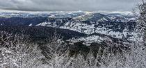 Beautiful winter from the mounains  by Enache Armand Iustinian