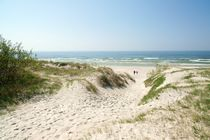 Dunes of the Curonian Spit on the Baltic. Lithuania by David Lyons