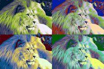 Funny colors-1 von maja-310