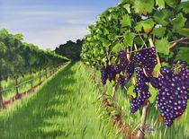 Vineyard No 1 von Angelo Pietrarca