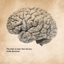 The Brain Is Wider Than The Sky by olaartprints