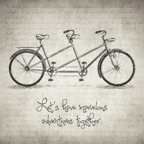Bicycle Quote by zapista