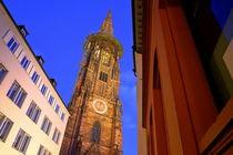 Mittendrin Freiburger Münster von Patrick Lohmüller