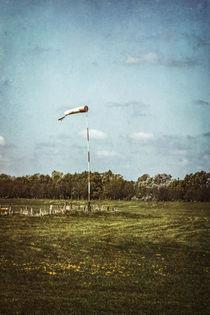 Windbeutel von Petra Dreiling-Schewe