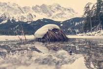 Schneebedecktes Grasbüschel im Eibsee von Franz Sußbauer