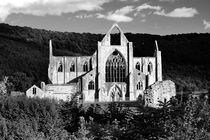 Tintern Abbey. B&W by David Lyons
