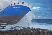 lost in the storm... 2 von loewenherz-artwork