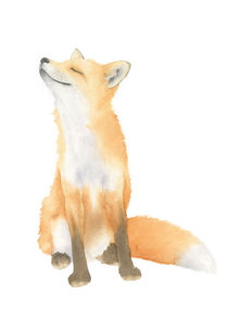 Fox Watercolor by olaartprints