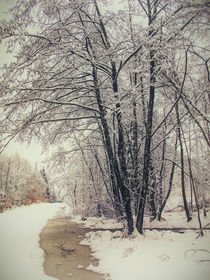 Winterlandschaft I von Christine Horn