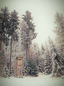 Winterwald III by Christine Horn