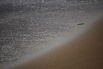 seashore... 1 by loewenherz-artwork