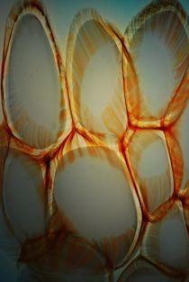 Malta glass... 8 von loewenherz-artwork