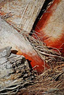palmtree structures... 3 von loewenherz-artwork