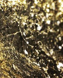 Gold 2 von Silja Frank