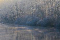 Wintermorgen von Bernhard Kaiser