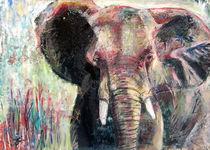 Elefant aus Südafrika von Renée König