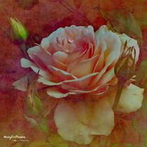 'A Rose ' by Mary Lee Parker
