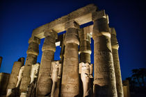 Luxor Temple at Night by Andy Doyle