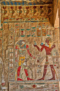 Hieroglyphics at Hatshepsut Temple Luxor by Andy Doyle