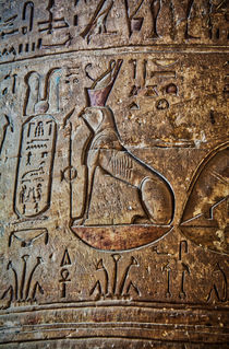 Hieroglyphics at Temple of Horus at Edfu by Andy Doyle