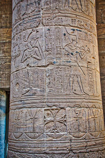 Hieroglyphics at Philae Temple in Aswan by Andy Doyle