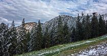 To Beautiful Peak Postavarul  by Enache Armand Iustinian
