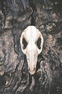 Wild Wood von Karen Black