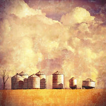 Summer Silos by Karen Black