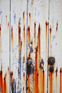 Maltese door... 3 von loewenherz-artwork