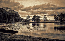 The view across Paul's Pond by Colin Metcalf