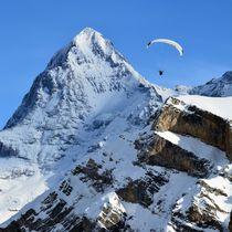 Gleitschirmflieger vor dem Eiger by Bettina Schnittert