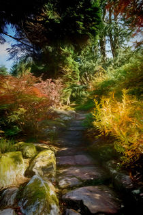 Rocky Path by Colin Metcalf