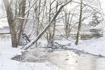 Winter Stream by Colin Metcalf