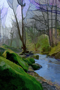 Woodland Stream by Colin Metcalf