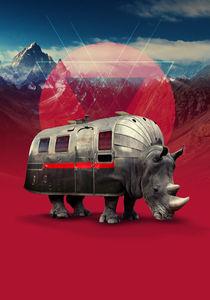 Rhino by Ali GULEC