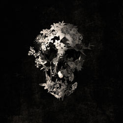 Spring-skull-monochrome